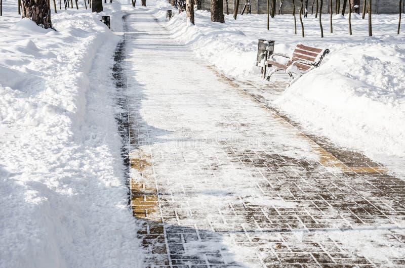 Callejón nevado en el parque en el invierno foto de archivo libre de regalías