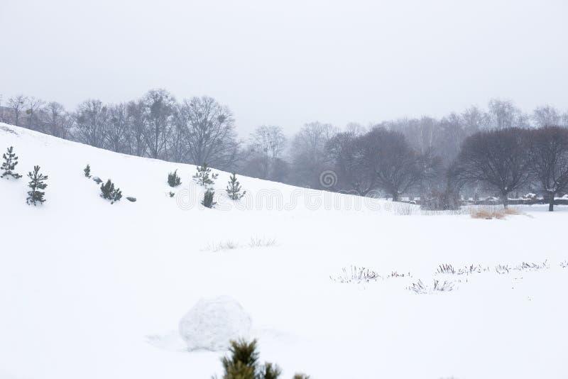 Callejón por mañana nevosa foto de archivo libre de regalías