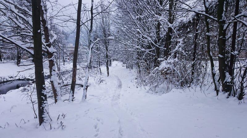 Callejón por mañana nevosa fotos de archivo libres de regalías