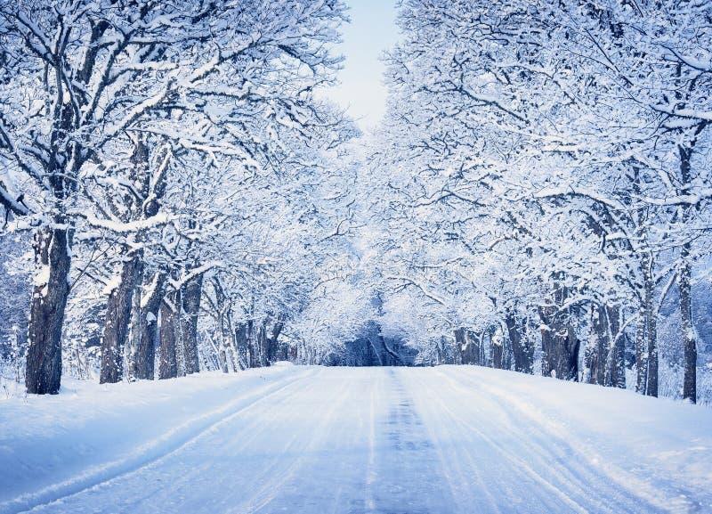 Callejón por mañana nevosa imagen de archivo