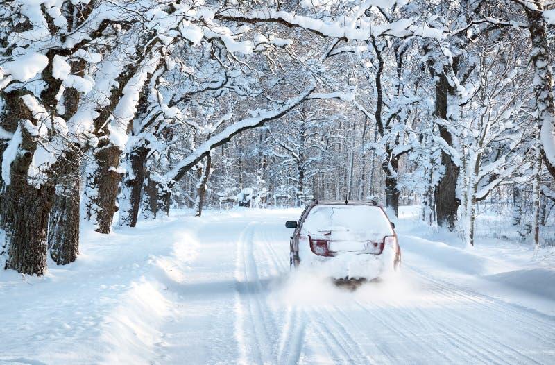 Callejón por mañana nevosa fotografía de archivo