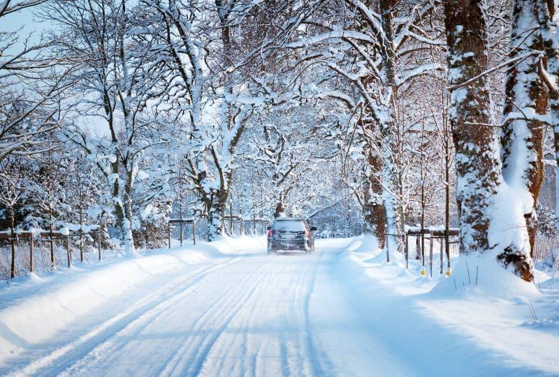Callejón por mañana nevosa imagen de archivo libre de regalías