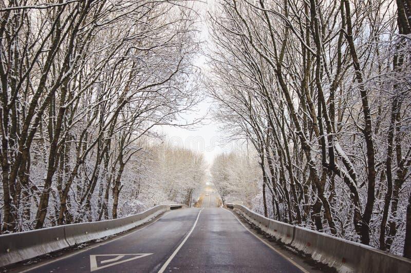 Callejón por mañana nevosa imagenes de archivo
