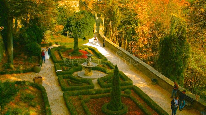 Callejón romántico hermoso en un parque con los árboles coloridos y la luz del sol fondo de la naturaleza del otoño - Bilder foto de archivo