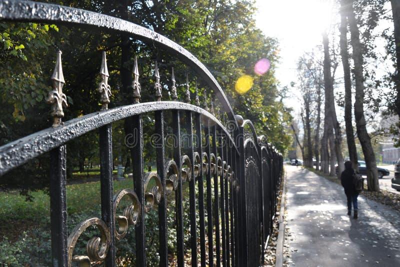 Callejón sombrío del parque de la ciudad, día caliente del otoño imagen de archivo libre de regalías