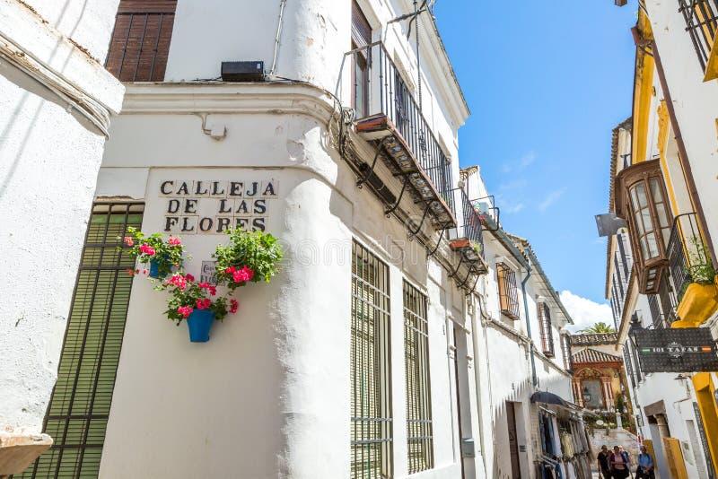 Calleja de Las Flores immagini stock libere da diritti