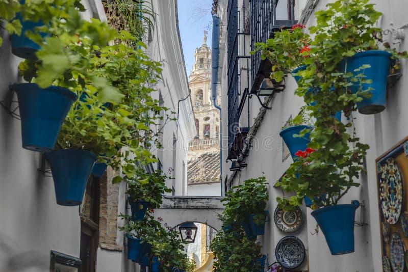 Calleja DE las Flores in Cordoba, Andalusia, Spanje stock foto