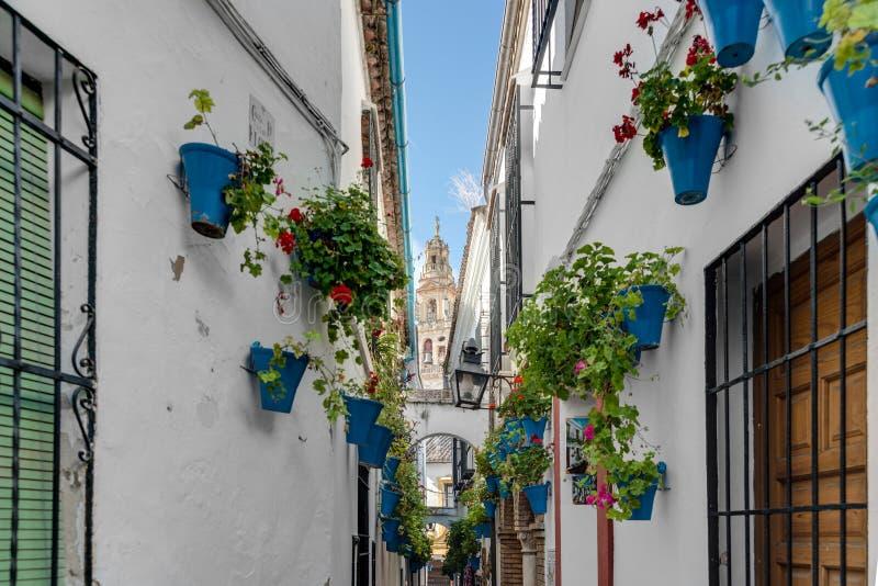 Calleja DE las Flores in Cordoba, Andalusia, Spanje stock foto's