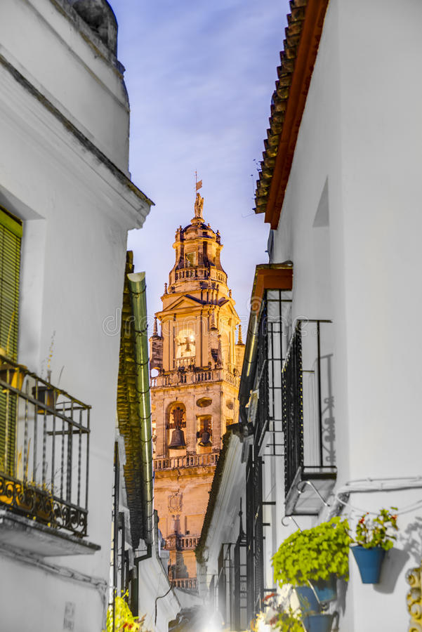 Calleja de Las Flores a Cordova, Andalusia, Spagna fotografie stock libere da diritti