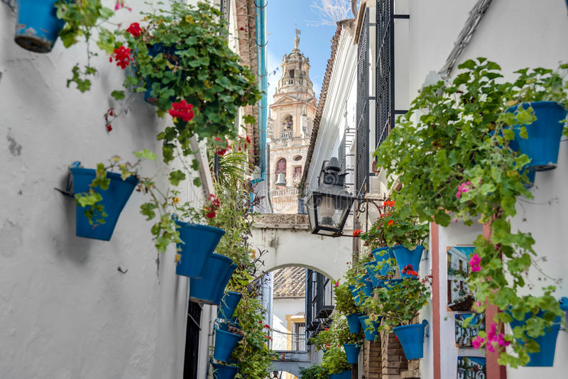 Calleja de Las Flores a Cordova, Andalusia, Spagna fotografia stock
