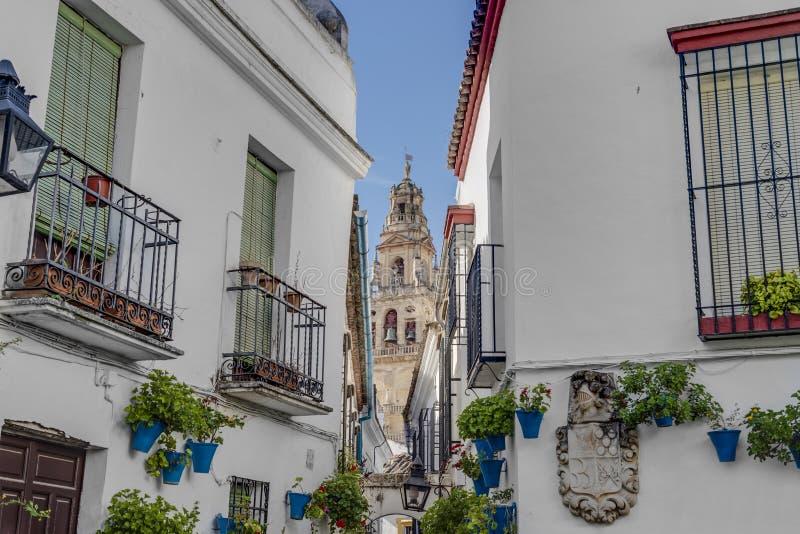 Calleja de Las Flores i Cordoba, Andalusia, Spanien arkivfoto