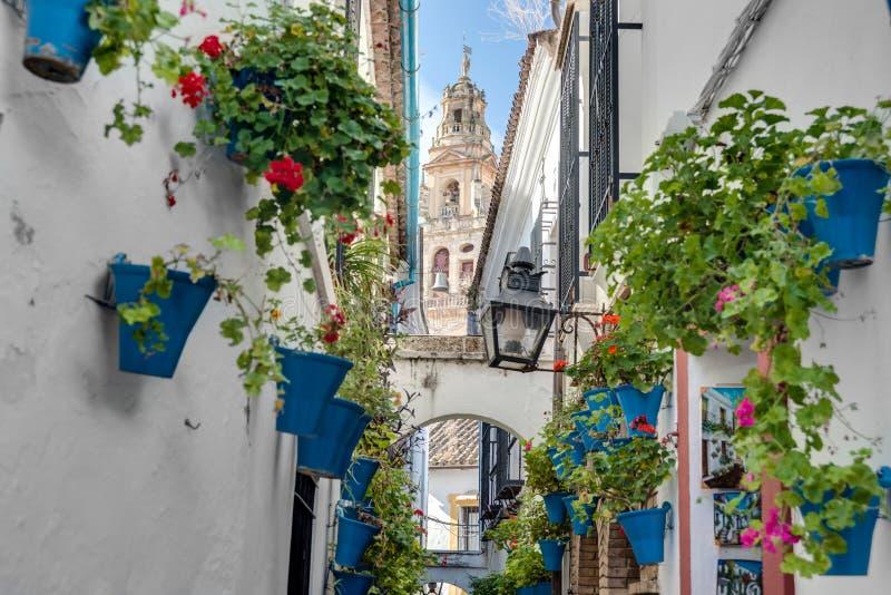 Calleja de Las Flores i Cordoba, Andalusia, Spanien arkivbild