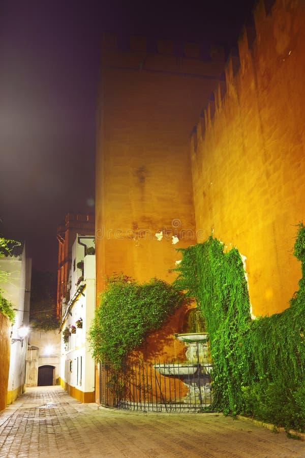 Callejon del Agua de Sevilha na noite imagem de stock