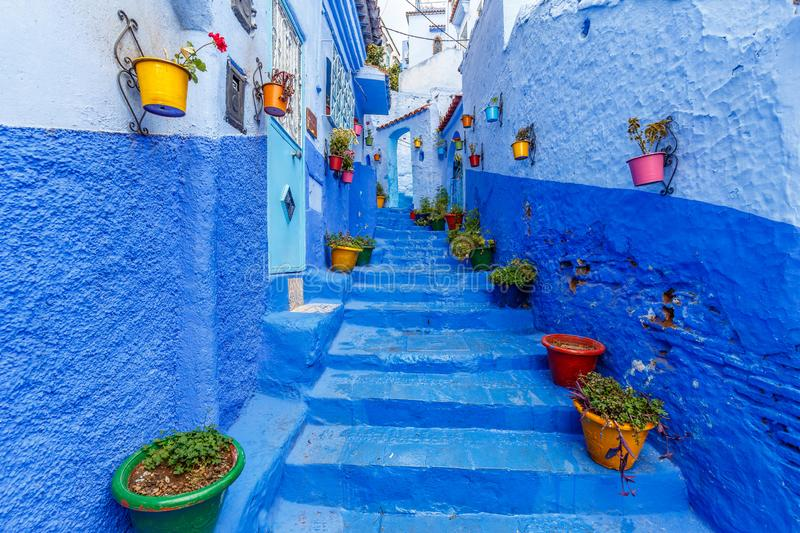 Colourful pot plants in Callejon El Asri in Chefchaouen. Nicely decorated with colourful pot plants this alley is the most photographed place in the Blue City royalty free stock images