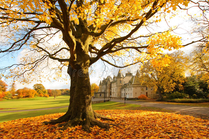 Callendar House in Autumn, Falkirk, Scotland royalty free stock photo