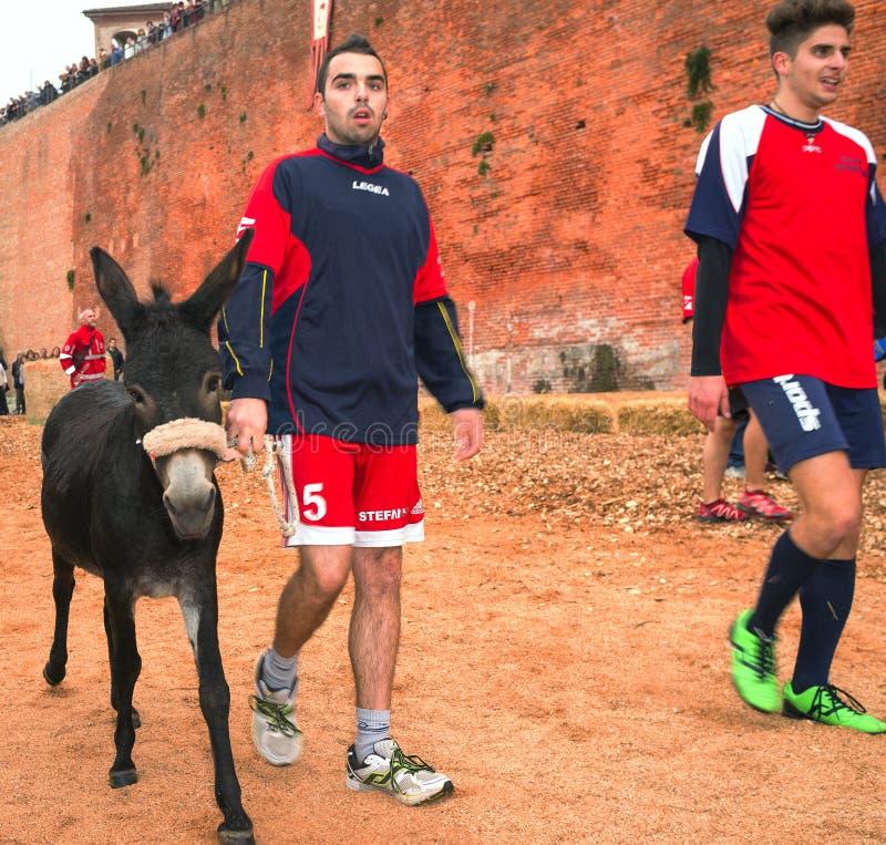 Calliano (Asti), the donkeys race. Color image royalty free stock photos