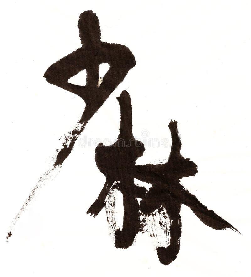 Calligrafia Del Cinese Di Shaolin Fotografia Stock Libera da Diritti