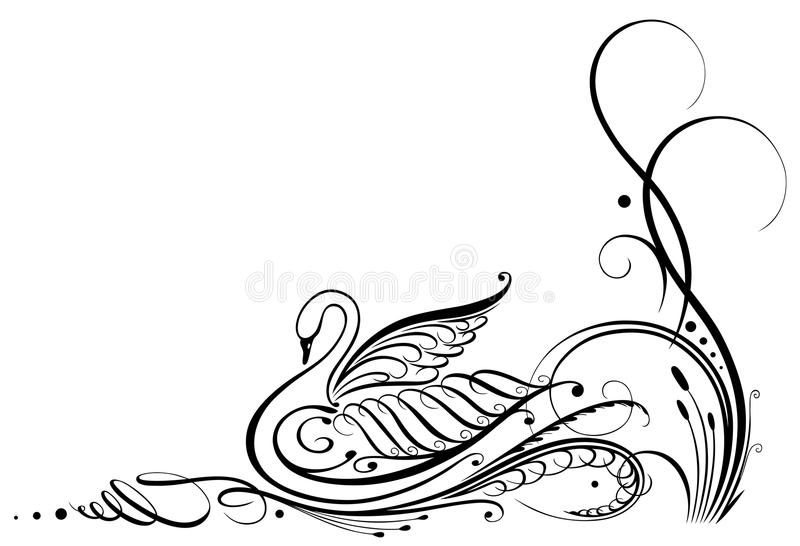 Calligraphy, swan. Black swan calligraphy, filigree illustration vector illustration