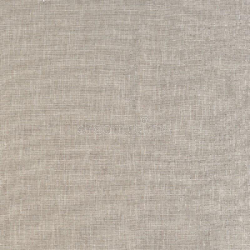 Calliope Ivory Texture foto de stock