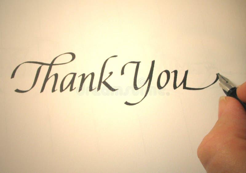 Callligraphy lo ringrazia immagini stock libere da diritti