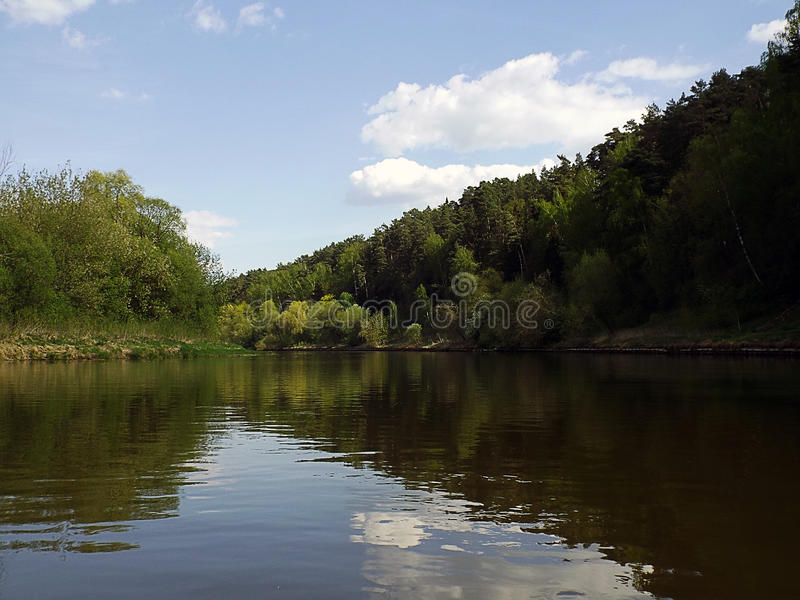 Calm bend of river with forest stock image