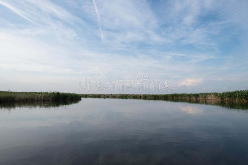 Calm landscape of water space, pond overgrown with reeds. Minimalist landscape on the river surrounded by reeds. The river stretches to the line of horizonta stock images