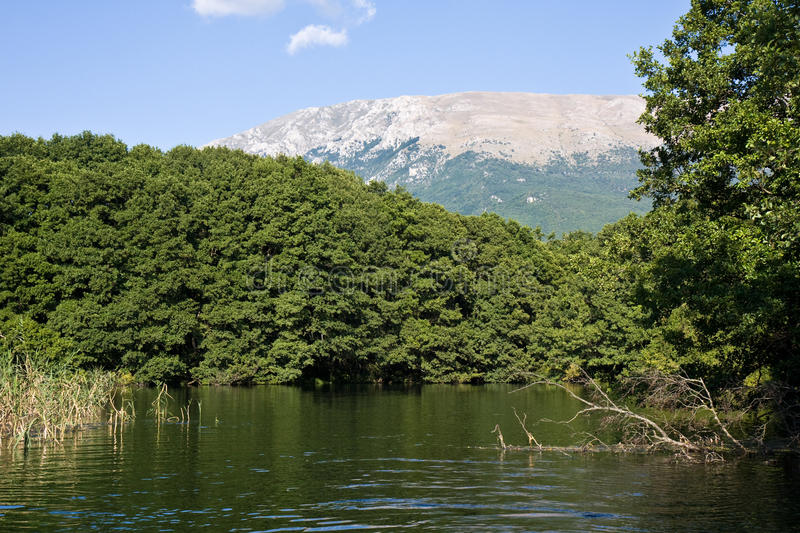 Calm Macedonian River royalty free stock images