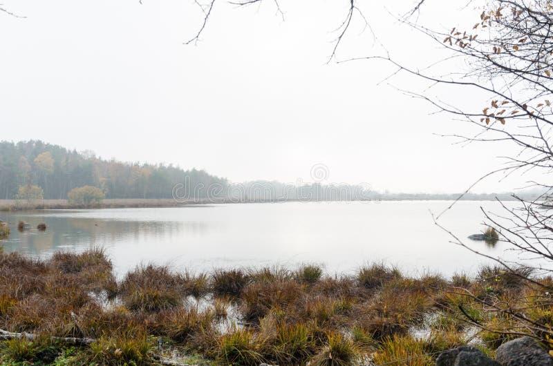 Misty pond at fall season royalty free stock photos