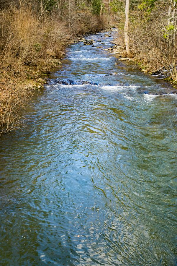 A Calm Mountain Trout Stream in the Blue Ridge Mountains. A calm mountain trout stream located in the Blue Ridge Mountains of Botetourt County, Virginia, USA royalty free stock images