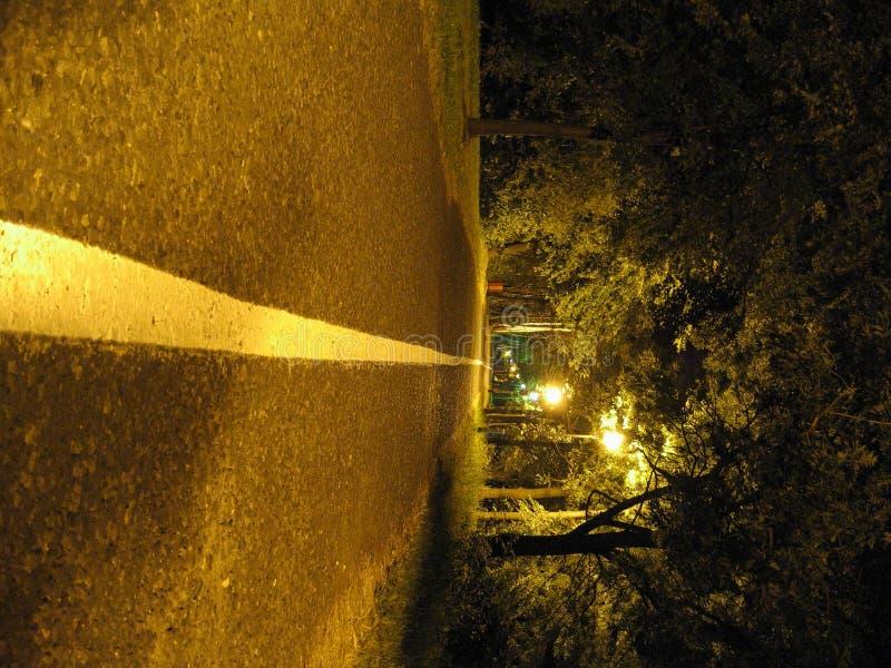 Calm night photo of an alley royalty free stock photos