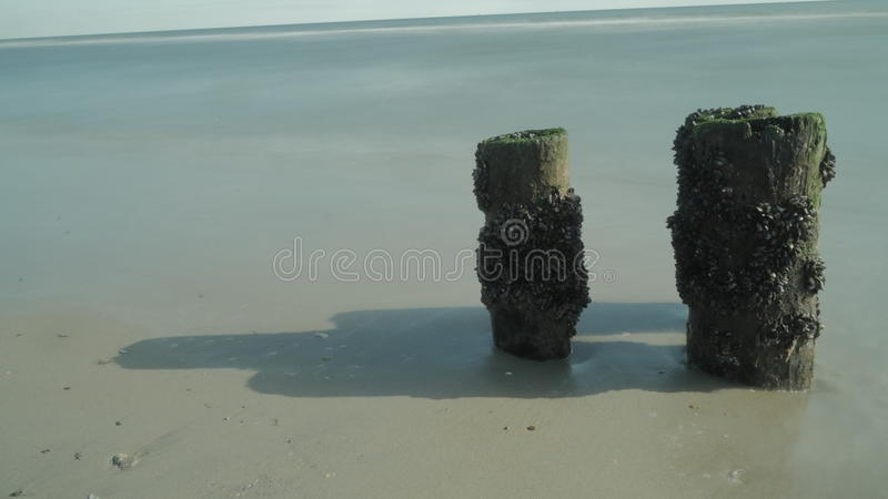 A calm ocean royalty free stock images