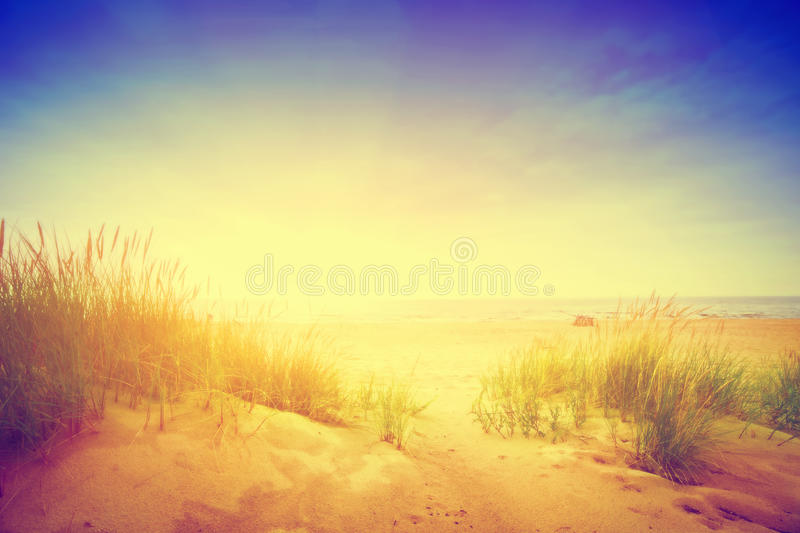 Calm ocean and sunny beach with dunes and green grass. Vintage. Calm sunny beach with dunes and green grass. Ocean in the background. Vintage stock photo