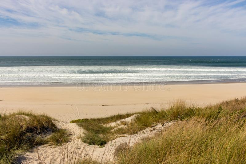 Calm panoramic seaside with beach and grass. Peaceful ocean landscape. Tropical shore with empty beach. Surf on sandy beach with grass. Summer vacation concept royalty free stock photos