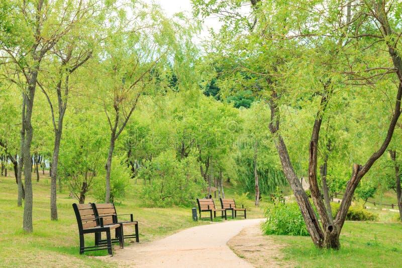 Calm and peaceful park stock photos