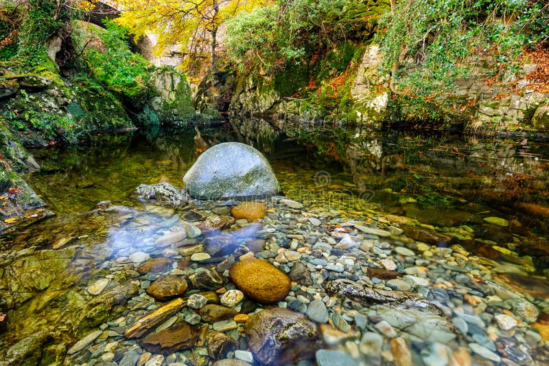 Calm pond with wet round rocks, mossy and rocky riverside in Tollymore Forest Park royalty free stock image