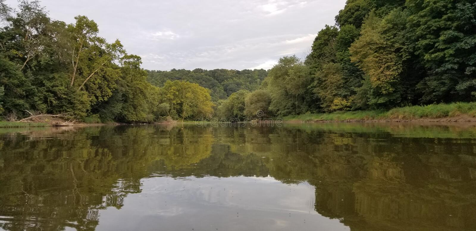 Calm River Flowing Thru Green Forest stock photography