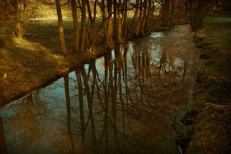 Calm river stream
