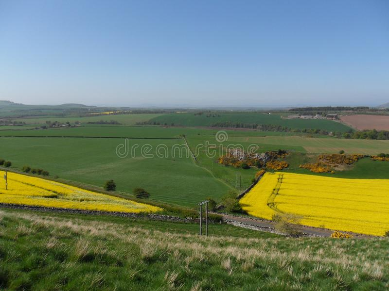 Calm and scenic agricultural view of sunny Scotland stock image