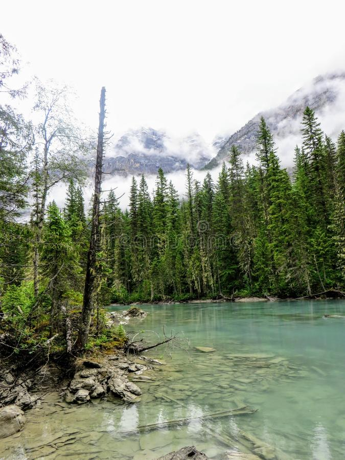 A calm and shallow turquoise blue river surrounded by tall fir trees with the rocky mountains in the background covered in mist. Along the Berg Lake Trail in royalty free stock photos