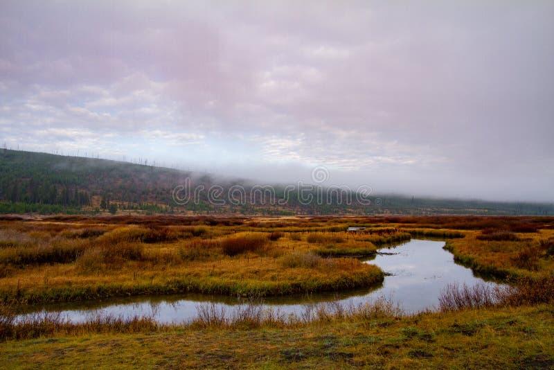 Calm Stream Through The Prairie stock images