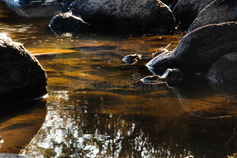 Brown calm river sun rays. Calm stream with underwater sun rays giving the rocks golden and brown colour over black rocks with white line glowing from the sun as royalty free stock photo