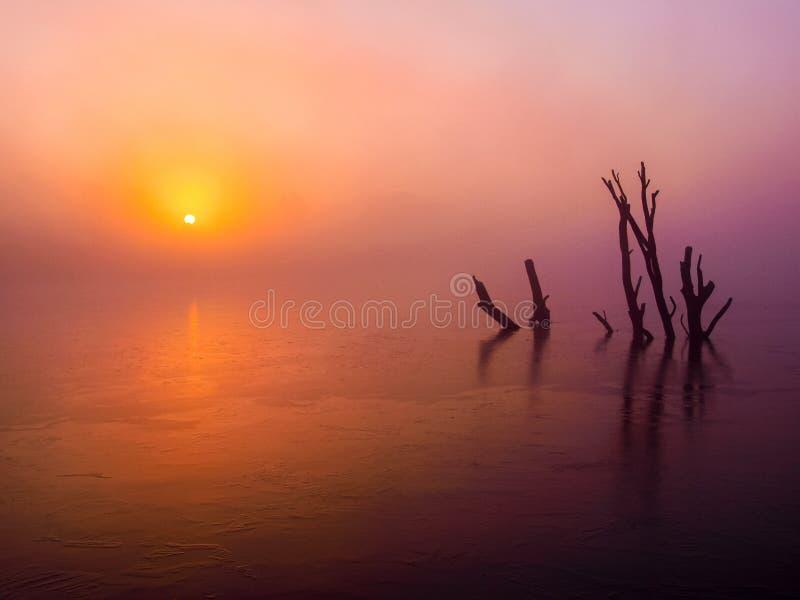 Calm, Sunrise, Afterglow, Sea stock photography