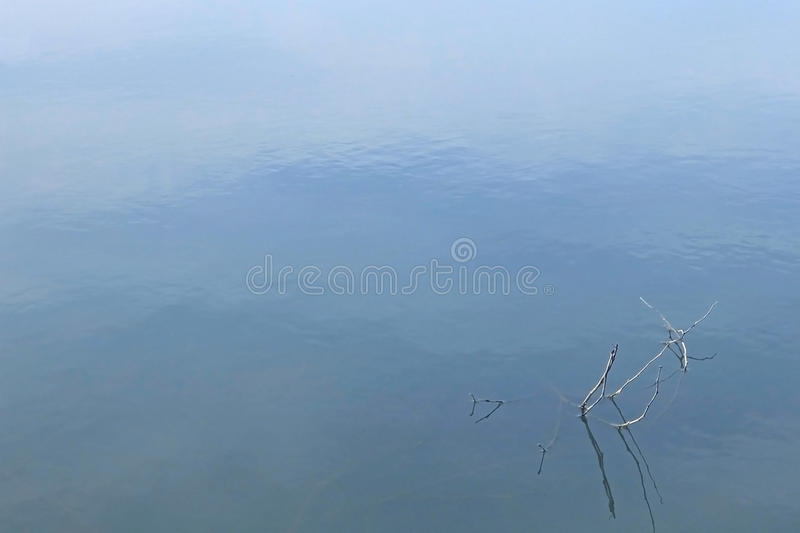 Calm water background. Surface of calm water and twigs, blue background royalty free stock image