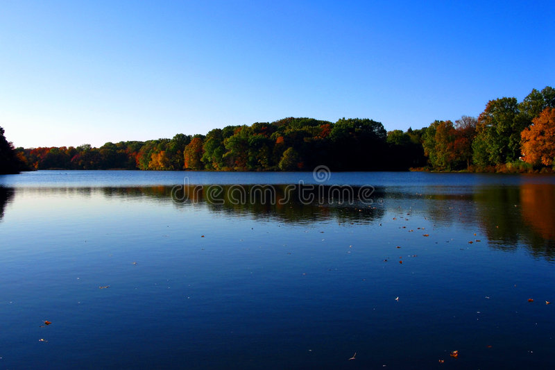 Calm Water Lake and Trees in Early Fall royalty free stock images