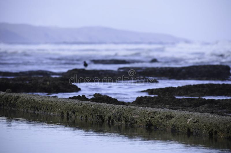 Calm Water In A Manmade Tide Pool With Rocks And Waves Defocused Background stock image
