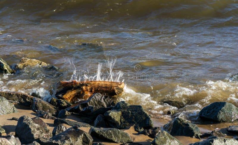 Calm waves on the sand coast stock image