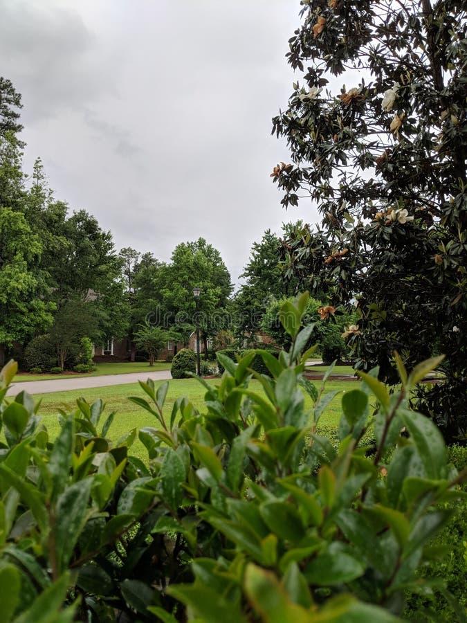 Calma antes de la tormenta foto de archivo libre de regalías