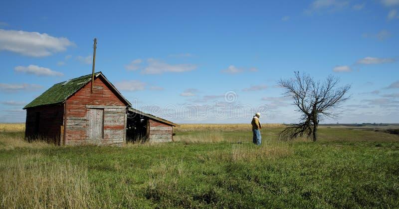Calma del vaquero foto de archivo