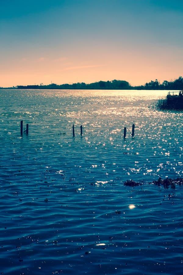 Calma na água com algumas pilhas de madeira fotos de stock royalty free