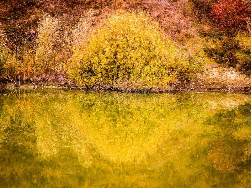 Calme Autumn Pond photographie stock